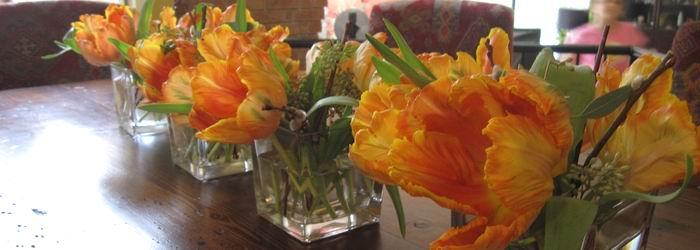 tulips in cubes