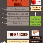 Genetically Modified Foods Good or Bad